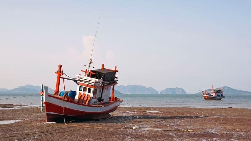 סירת דיג