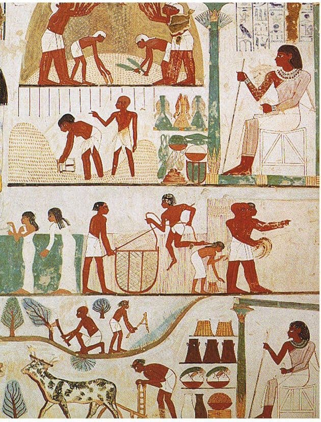 מצרים העתיקה, עבודה חקלאית