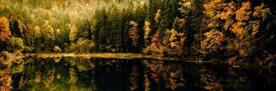 יער, אגם, בוואריה
