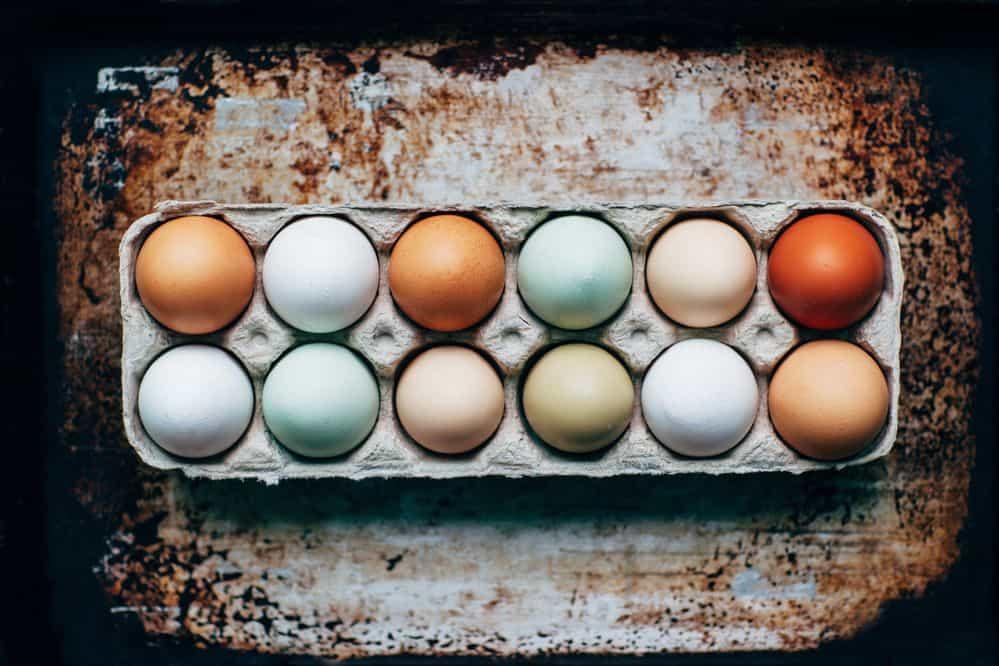 ביצים, ביצי חופש, פליאו