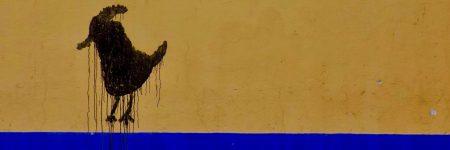 תרנגול, קיר, מקסיקו