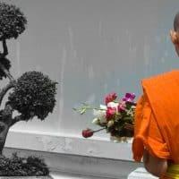 נזיר בודהיסטי, בונזאי, פרחים