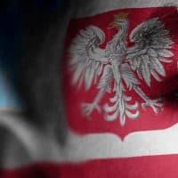 ילד, פולין, נשר, דגל