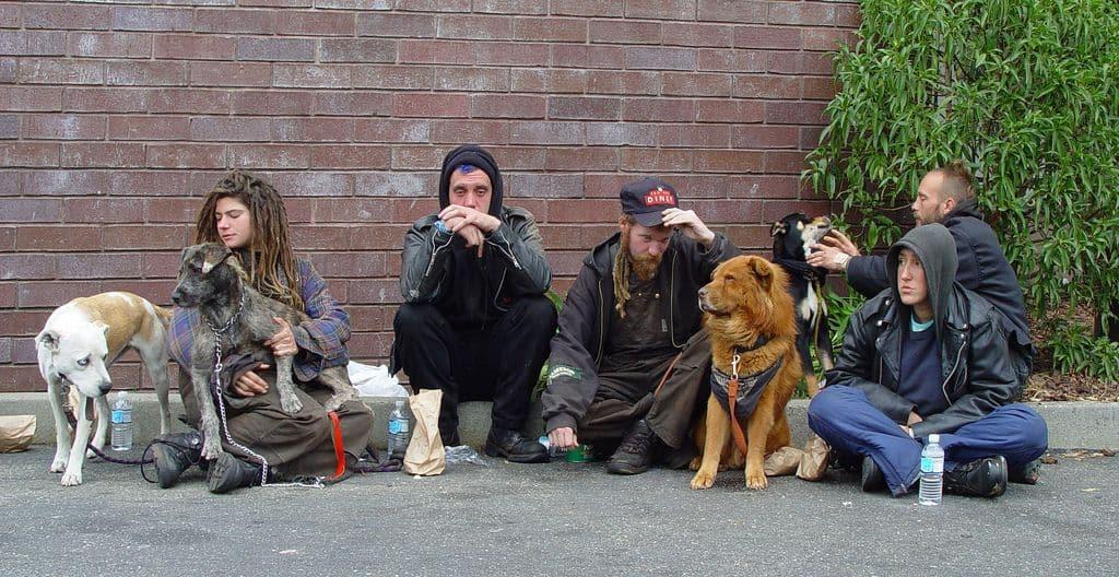 חסרי בית, סן פרנסיסקו