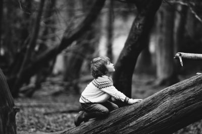 עץ, לטפס, טיפוס, ילד, כרות