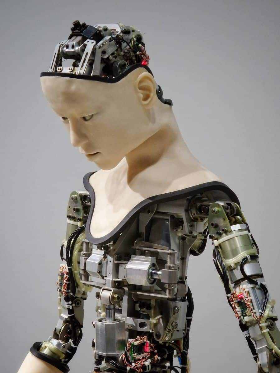 סייבורג, אדם רובוטי