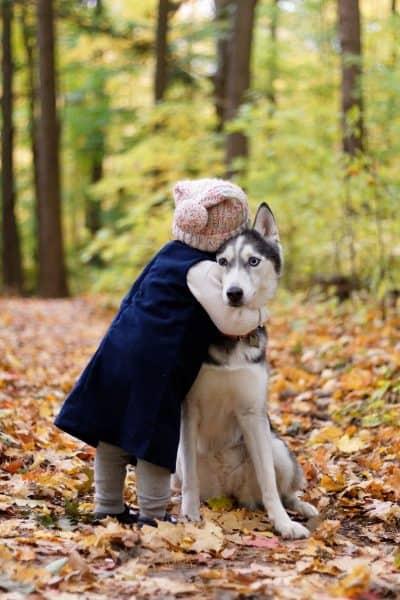 חיבוק, ילדה, כלב