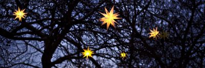 כוכבים, עץ, פנסים