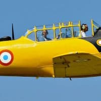 מטוס, בוכנה, פעלולים