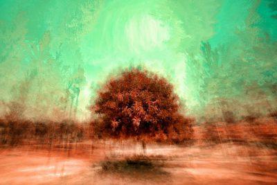 עץ, נוף, מטושטש