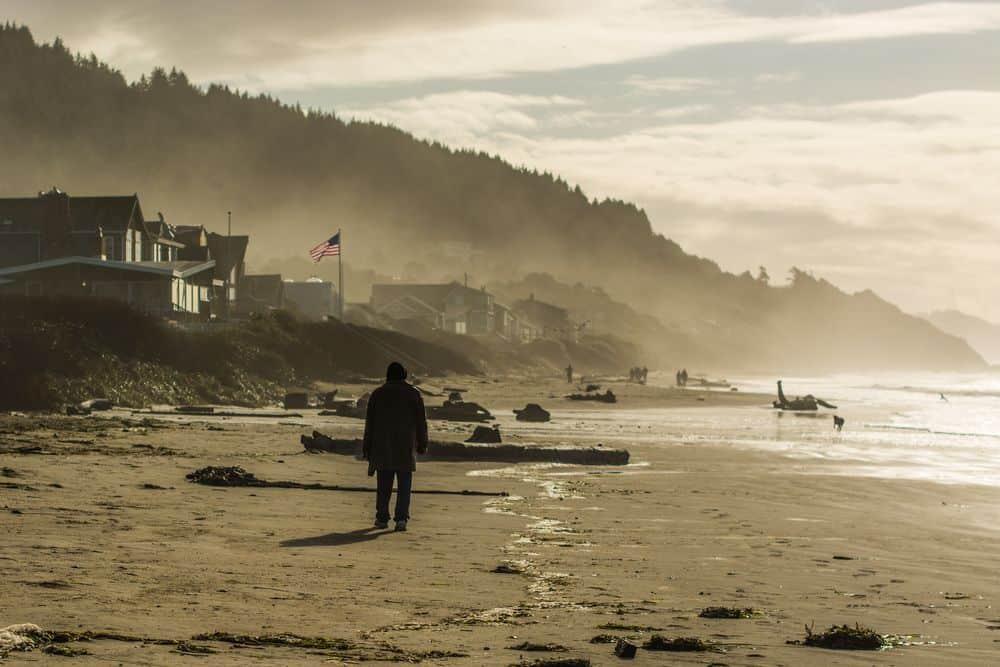 """חוף, זיכרון, דגל ארה""""ב, כלב"""