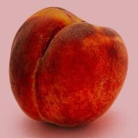 אפרסק, תשוקה, עסיסי