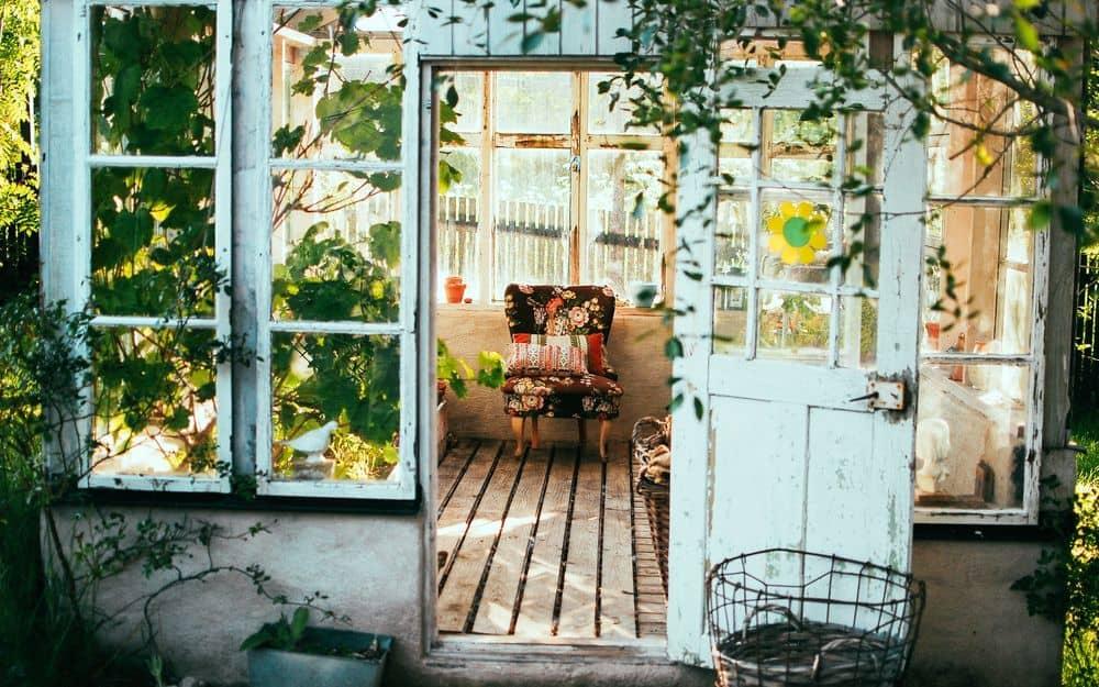 בית, חצר, כורסה, צמחים