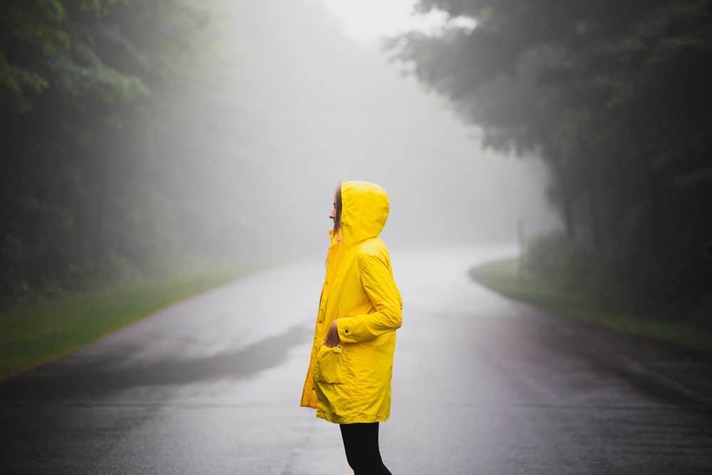 מעיל צהוב, ערפל