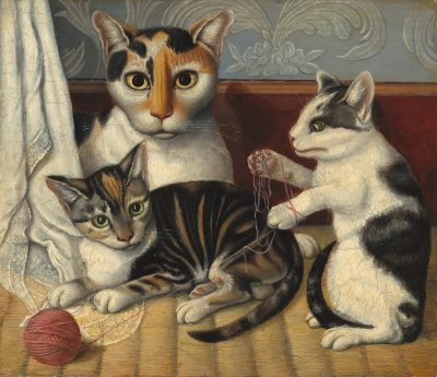 חתולים