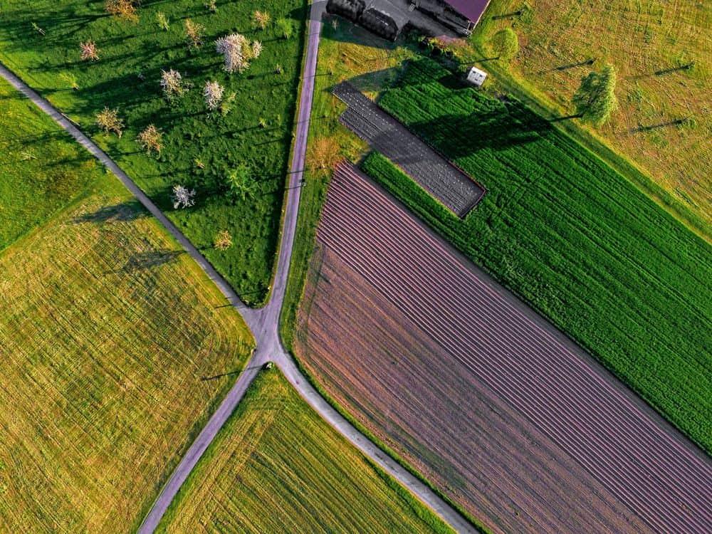שדות, כבישים, חקלאות