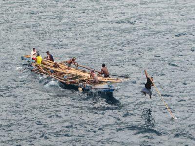 למאלרה, ציד לווייתנים