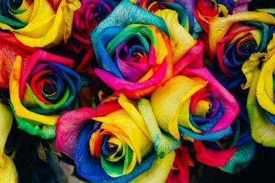 ורדים, צבעים