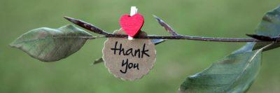 תודה, לב, עץ, ענף, עלים