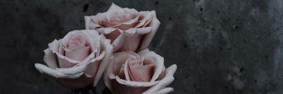 ורדים, שלוש