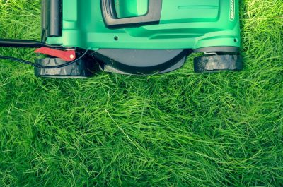 מכסחת דשא, דשא