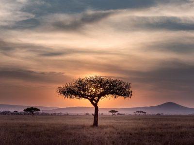 סרנגטי, טנזניה, אפריקה, שקיעה