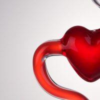 לב, דם, כלי דם, זרימה