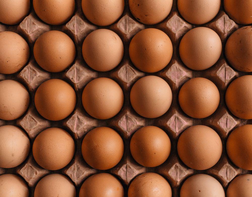 ביצים, קרטון ביצים