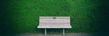 ספסל, גן ציבורי, ניו זילנד