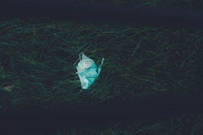 מסיכה, דשא