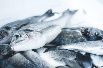 דגים, שוק דגים