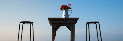 שרפרפים, אגרטל, ורדים