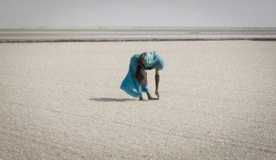 מלח, עובדת, הודו, פקיסטן