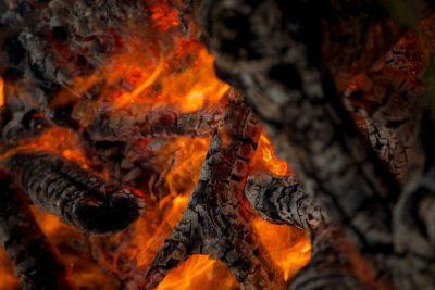 עץ, בעירה, שריפה, טבע