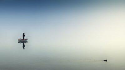 סירה, דייג, מים, שקט, ברווז