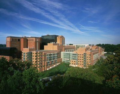 NIH, המכון הלאומי לבריאות, בת'סדה