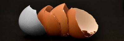 קליפות ביצים, ביצים שבורות, ביצים