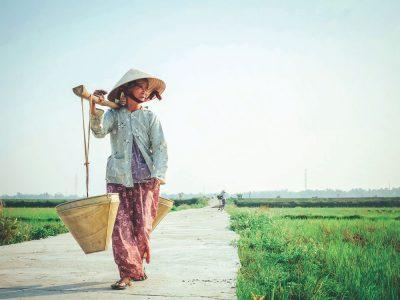 אישה, שדה אורז, וייטנאם, איזון, סלים