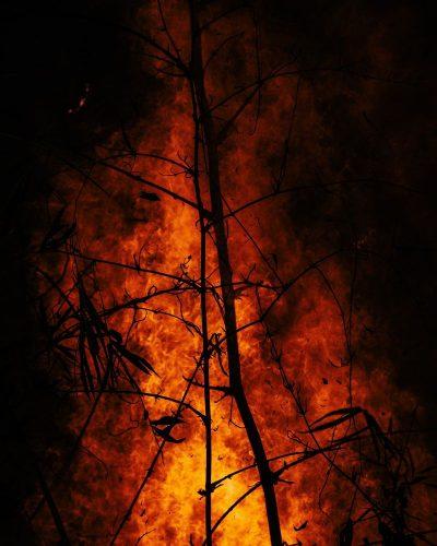 שריפה, יער, לייזר, יהודים, חלל