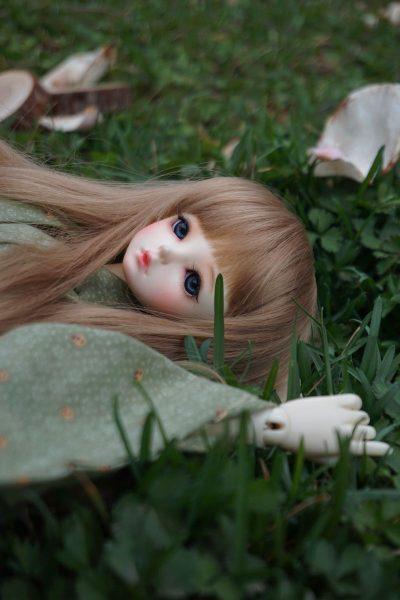 בובה, דשא