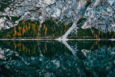 אגם, איטליה, יער
