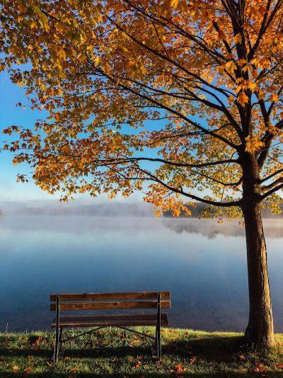 סתיו, עלים, אגם, שלכת, ערפילים