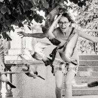 יונים, צעירה, פארק